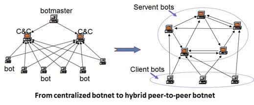 botnet model