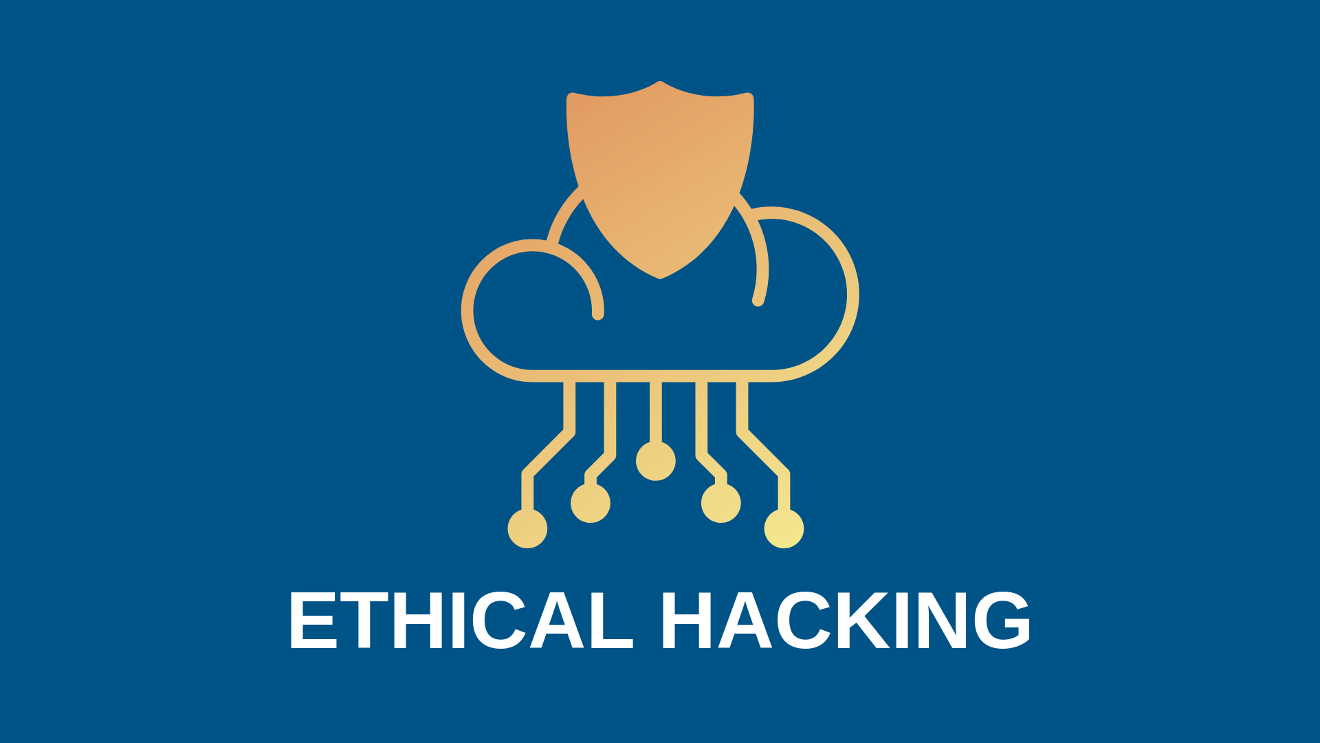 Cyber Security Training | Level 01 - Ethical Hacking Course